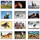12 Einladungskarten Kindergeburtstag: Pferd Geburtstagseinladungen Einladungen Geburtstag Kinder Mädchen (Mit passenden Umschlägen)