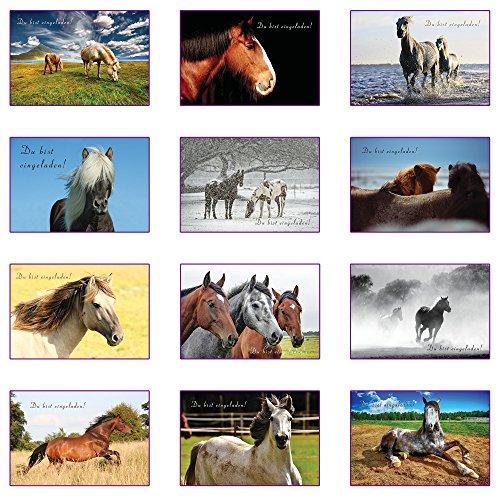 the lazy panda card company 12 Einladungskarten Kindergeburtstag: Pferde Geburtstagseinladungen Einladungen Geburtstag Kinder Mädchen (Mit passenden Umschlägen)