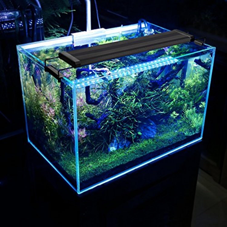 Bellalicht Aquarium Led Et 25w Lampe Smd 144led 90 Bleu Rampe Blanc eodCrBxW