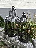 Dekokäfig Käfig Vogelkäfig Vogel Pflanzkäfig 2er Set Paar Shabby Antik Stil
