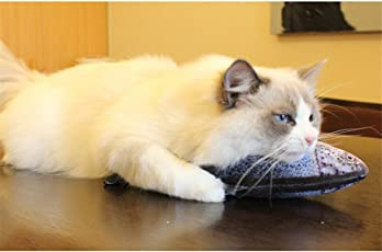 Lalang Katzenminze Katzenspielzeug, Katzen Interaktives Spielzeug Fischform Kissen Katze Kratz mit Catnip