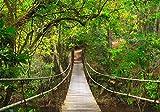 Wallario Wand-Bild 70 x 100 cm | Motiv: Hängebrücke im Urwald grüner Dschungel | Direktdruck auf 5mm starke Hartschaumplatte | leichtes Material | günstig