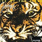 Songtexte von Survivor - Eye of the Tiger