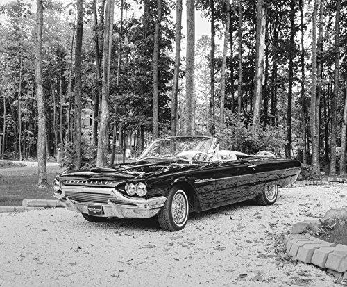 David Chapman/Design Pics - 1964 Ford Thunderbird; Waterloo Quebec Canada Photo Print (43,18 x 35,56 cm)