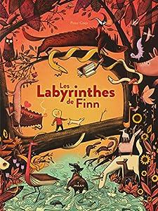 """Afficher """"Les labyrinthes de Finn"""""""