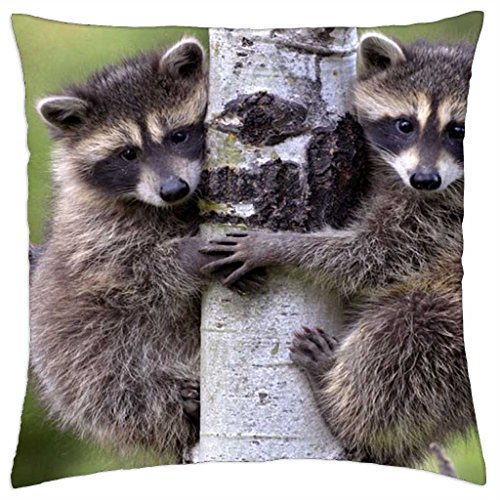 mike-and-ike-throw-pillow-cover-case-18-x-18