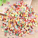 Beauneo 1000pcs/Bag Assorted Clay 3D Fruit Pattern Slices Nail Art Decoration by Cool Shiny Slicing Nail Decorations