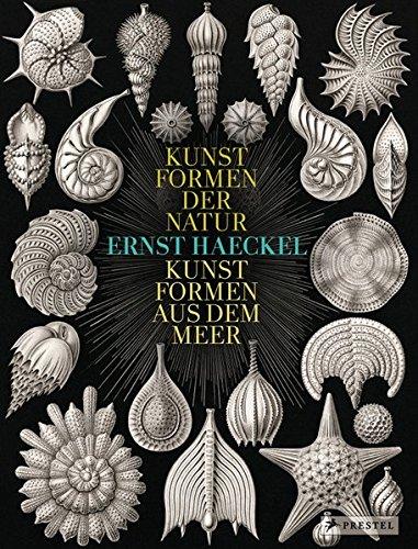Ernst Haeckel: Kunstformen der Natur - Kunstformen aus dem Meer (Formen Kunst)