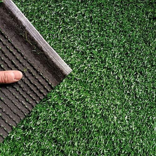 YUER Kunstrasenteppich, gefälschte Gras-Matten-grüne Rasen-natürliche realistische Garten-Rasen-Haustier-Hundematte im Freien (Farbe : 3cm, größe : 2mx4m)