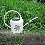 wangxn Flasche Eisen Garden Wasser aus verzinktem Metall Junction Tank Wasserkocher 1.7L white bottom Foto Farbe