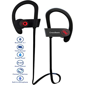 CrossBeats Raga Wireless Bluetooth Earphones with Microphone IPX-4 Sweatproof Sports Design with Carry Case, HD Sound, Super Bass (Cherry Black)
