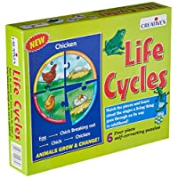 Creative Educational Creative Pre-School Life Cycles