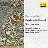 Ensemble Peregrina-Agnieszka Budzinska: Music in Medieval Denmark (Audio CD)