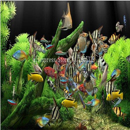 FARMERLY Samen Paket: Seedss Aquarium Aquarium Dekoration s Samen Seedss Samen 100seeds / bag: 3 (Fish Tank Dekorationen Billig)