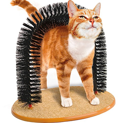 Arco Massagegerät für Katze