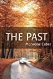 Image de THE PAST: Take Back Your Power & Overcome Depression in Spite of Your Negative Past (English Edition)