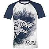 Game Of Thrones Painted Stark Raglan T-shirt blanc/bleu L