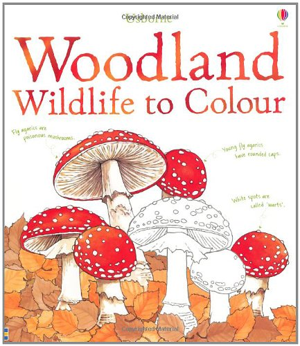 Woodland Wildlife to Colour (Usborne Colouring Books)