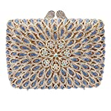 Bonjanvye Studded Shining Bags for Girls Wedding and Party Evening Clutches Bag