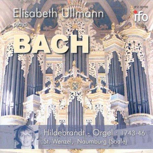 Orgelwerke-Hildebrandt-Orgel Naumburg