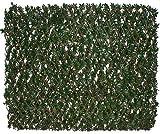 Ausziehbares Sichtschutzgitter Aus PVC - Ahorn - 1m x 2m - Papillon™
