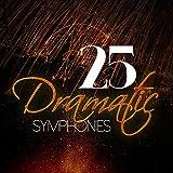 Symphony No. 3 in F Major, Op. 90: III. Poco allegretto