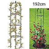 Qulista Garten Rankhilfe Kletterrosen Kletterpflanzen Hoch Metall, Geeignet für Balkon, Garten, Blumenbeet, Rosen,Tomaten,Bonsai (Typ 1)