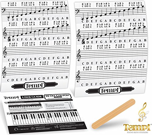 61GzmLIBEwL - BEST BUY #1 Tempi Piano Stickers for Keys ( 49 / 61 / 76 / 88) Notes Music Practice Tools for Musicians and Pianists Reviews and price compare uk