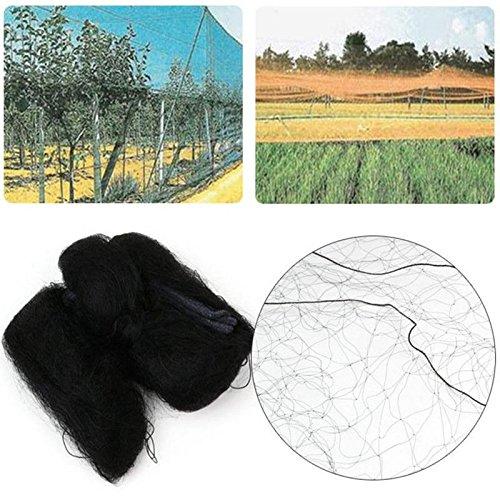 Shoppy étoile en Nylon Anti Oiseau Filet Filet de Vert protéger Arbre récoltes de Plantes Fruit Jardin en Maille 3 Tailles au Choix # 701 : 10 m