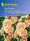 Kiepenkerl Alcea rosea Chaters Double Apricot