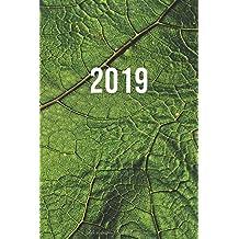 Amazon.es: Últimos 90 días - Calendarios y agendas: Libros