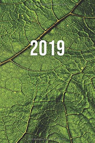 2019: ENE - DIC Agenda Semanal   152 x 229 mm   1 Semana en 2 Páginas   52 Semanas Planificador y Calendario   Hoja Verde