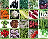 Viridis Hortus - 20 Packs of Vegetable Seeds -...