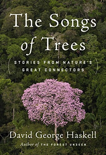 Palm Pine Tree (The Songs of Trees: Stories from Nature's Great Connectors)