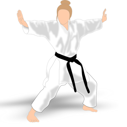 Karate All Shotokan Katas