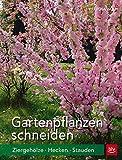 Gartenpflanzen schneiden: Ziergehölze, Hecken, Stauden