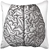 BZNX Throw Pillow Covers Print White Anatomy Human Brain Vintage from Meyers Konversations Lexikon 1897 Black Medical Old Antique 18 X 18 Inch Square Zipper Polyester Home Sofa Decorative Case