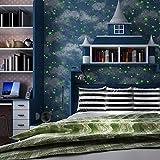 SDKKY Kinderzimmer leuchtende Tapeten himmel Storage wie Jungen und Mädchen Schlafzimmer decke Studie Vliestapeten, 1 Dekorative Wandpapier