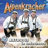 Die besten VM Audio In Audios - Alpenkracher Bewertungen