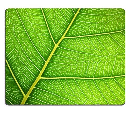 luxlady-gaming-mousepad-id-41984016-bodhi-leaf-macro-pattern-of-green
