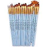 Goolsky 20pcs Draw Paint Brushes Set Kit Artist Paintbrush Multiple Mediums Brushes with Nylon Hair for Artist Acrylic Aquare