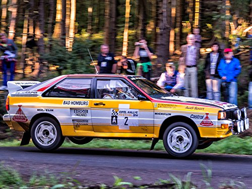Rallyesport 1984 (Rallye-räder)