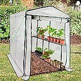 Serre de jardin casa pura® Thalia transparente | avec 2 tablettes + piquets et corde inclus | pour tomates et autres plantes | résistant aux intempéries, stabilisé UV