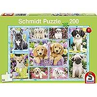 Schmidt 56162 Game, Multicolour