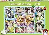 Schmidt Jigsaw Puzzle