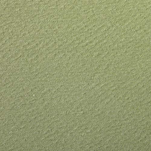 Clairefontaine 93884C Packung (mit 25 Bögen Zeichenpapier Etival Color, DIN A4, 21 x 29,7 cm, 160g, gekörnt, ideal für Trockentechnik und Einrahmen) olivgrün