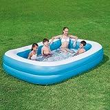 Bestway Pool rechteckig Vico klein 269x 175x 51h cm 10,2kg