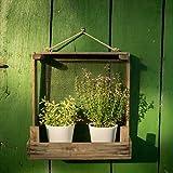 DieStadtgärtner Rústica Jardín Estante de cebollas Colador + + Ideal para ? ? de ollas + + para Interior y Exterior