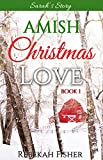 AMISH CHRISTMAS ROMANCE: Sarah's Story (Amish Christmas Love Book 1)