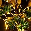 100Leds Wasserdichte LED Copper String Lights mit Fernbedienung, 10m LED Fairy String Lights Indoor und Outdoor für Weihnachten / Hochzeit / Party IP65